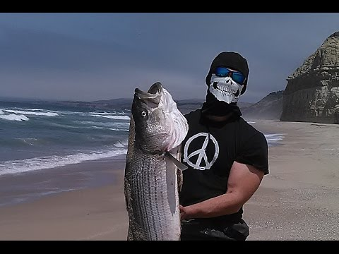 45 inch striped bass monster striper caught on beach for Watch big fish
