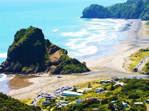 Piha beach and new zealand waterfall track | Auckland Region #3