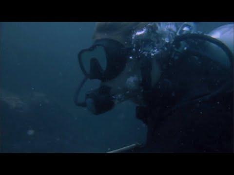 Sharktopus (2010): Divers Get Eaten (Death Scene)
