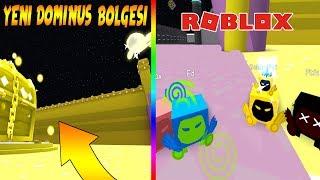 Roblox dominus