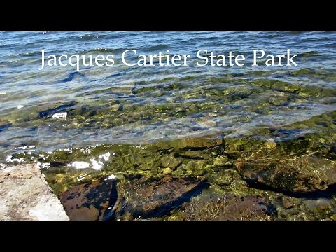 New York Travel Vlog {Jacques Cartier State Park}