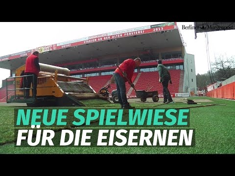 Neuer Rasen für das Stadion an der alten Försterei des 1. FC Union Berlin
