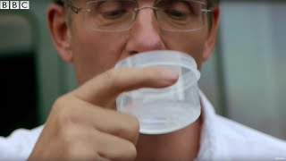 Swallowing Tape Worm Eggs! | Earth Lab