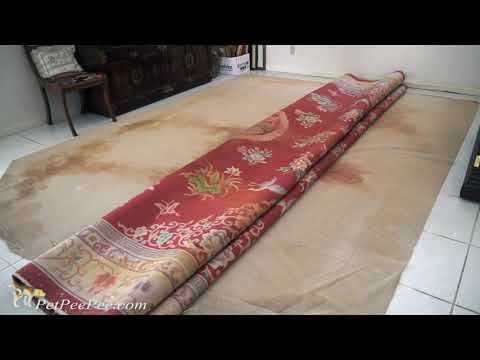 Save Money on cleaning oriental rug