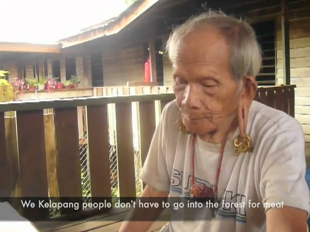 Pun Nibu recites Raja Obong's benging, Pa' Mada, Kelabit Highlands Travel Video