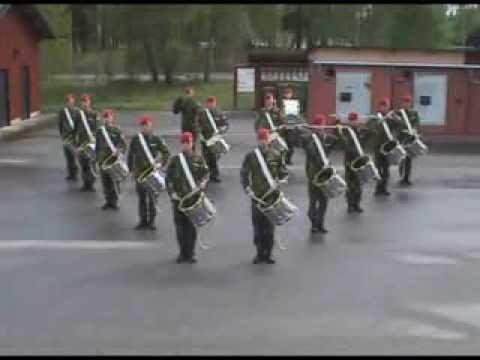 media   Swedish army