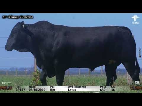 LOTE 039