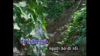 Hỏi Đá Có Buồn Không  - Jimmy Nguyễn -  Karaoke