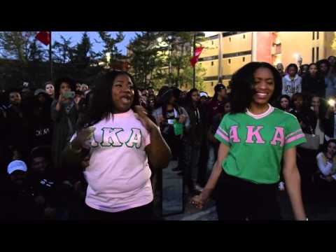 2016 Yard Show at Temple University- Delta Mu Chapter of Alpha Kappa Alpha Sorority, Incorporated