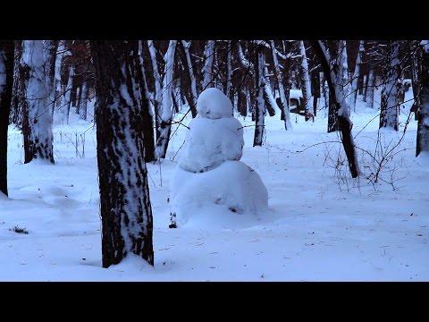 диктант 2 класс зима в лесу