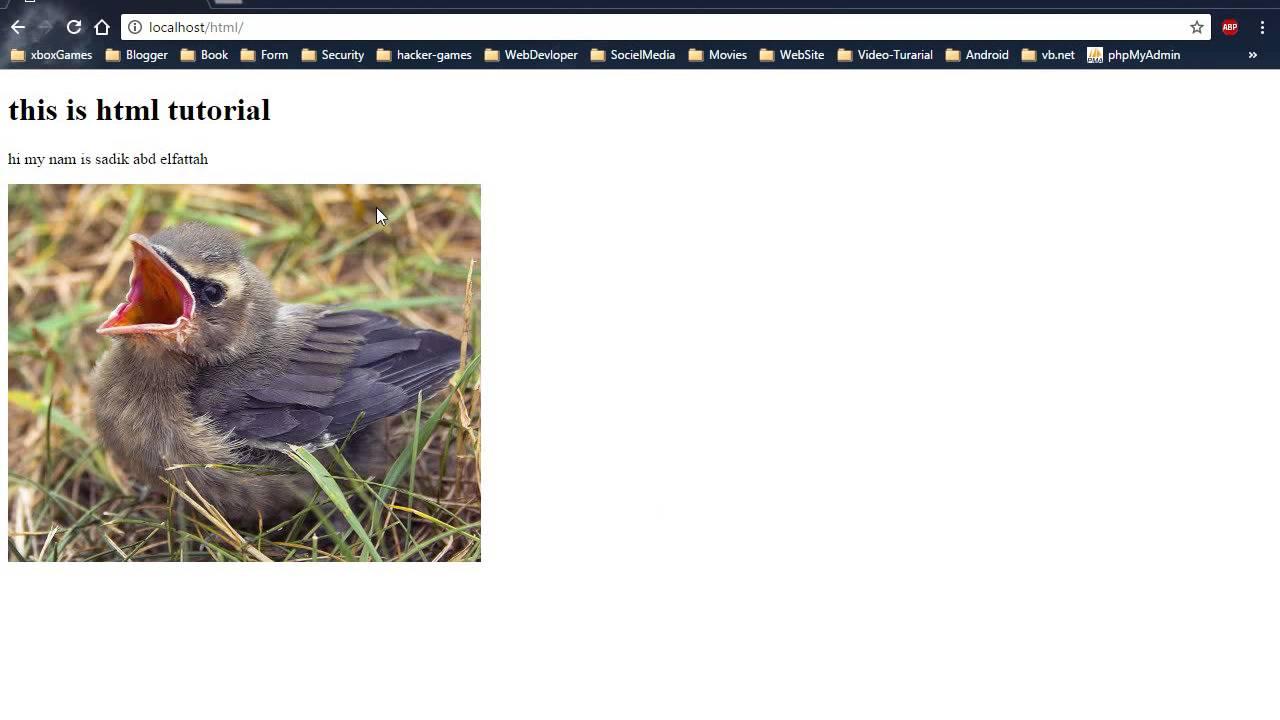 الدرس الخامس إدراج صورة (html)