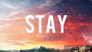 Stay - Zedd ft Alessia Cara (tradução PT/BR)