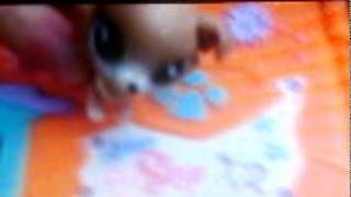 Lps Vlog 2: Going to Tacoma Part 2: My new Littlest pet shop house (Finale)
