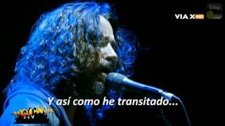Chris Cornell - (What