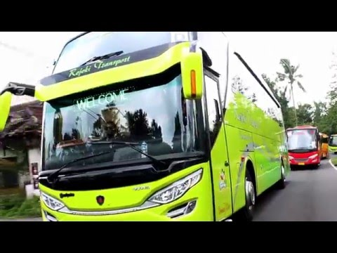 "Review Rejeki Transport Jogjakarta "" You Can Dancing In The Bus"" SCANIA K310 SHD Adi Putro"