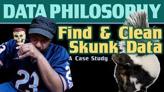 A Case Study on Data Quality: Find & Clean Skunk Data with Power Query