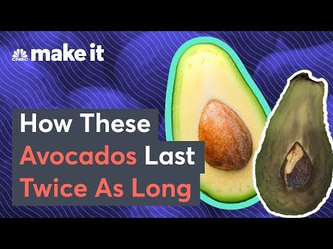 This Bill Gates-Backed Startup Makes Avocados Last Longer