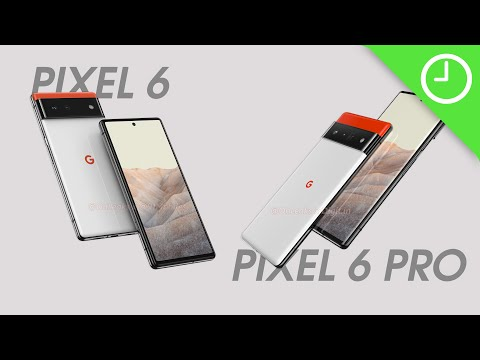 Pixel 6/6 Pro: Everything we currently know!