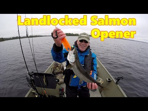 Landlocked Salmon Fishing New Brunswick Canada 2018