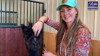 Amber Marshall:  A Day in Her life