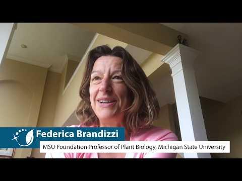 Gracielou Klinger's Impact On Great Lakes Bioenergy