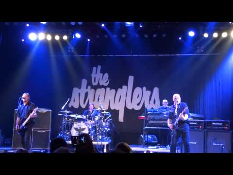 The Stranglers @ Reo ROck Roeselare 2015 No more heroes