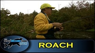 Roach fishing on the River Stour- Series 1- Episode 16