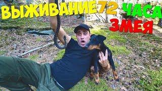 Опасное Выживание 72 Часа [3 часть] Чуть не укусила змея! Делаю подсак из майки ловлю рыбу