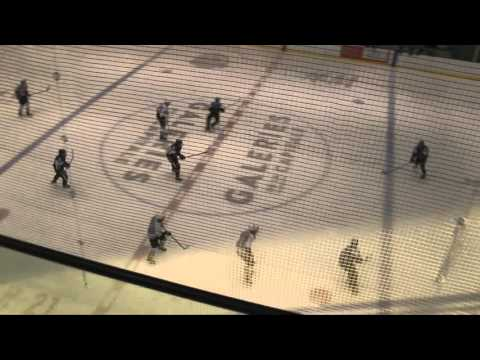 EXHIBITION GAME - Czech Knights vs Detroit Bell Tire AAA - 12/2/2016
