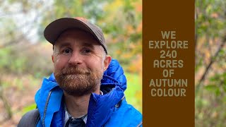 INCREDIBLE COLOURS at Leonardslee Gardens | We explore 240 acres during Autumn