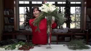 Diana Ryan -  Winter Holiday Floral Arrangements