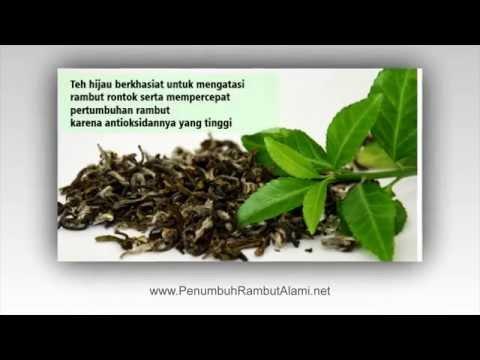 penumbuh-rambut-tradisional-tercepat,-obat-herbal-untuk-rambut-botak,-green-angelica