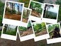 - Hutan Wisata Serni Indah