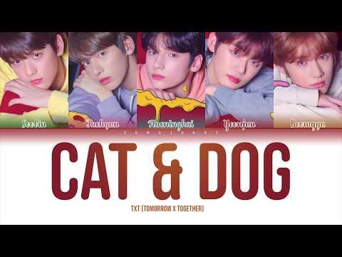 txt-(투모로우바이투게더)---cat-&-dog-(english-ver.)-lyrics-[color-coded/가사]