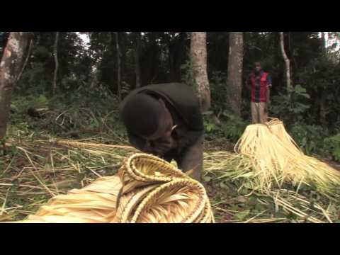 Introduction to Baka communities living around Dja Reserve
