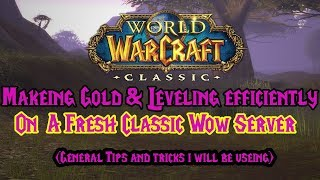 vanilla wow gold farming - Northdale wow - nostalrius-Classic wow- General Tips and tricks for fresh
