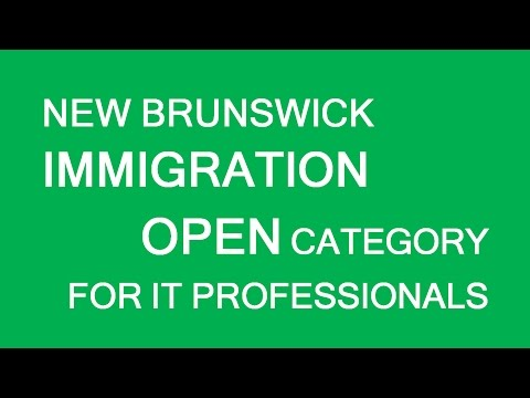 NB PNP Open category - opportunity for IT professionals