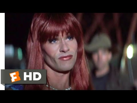 The Adventures Of Priscilla, Queen Of The Desert (1994) - Now You're F***ed Scene (6/8) | Movieclips