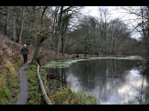 Holland Hike #2 - Two days in the hills & woods of Salland [Dec. 30-31, 2014]