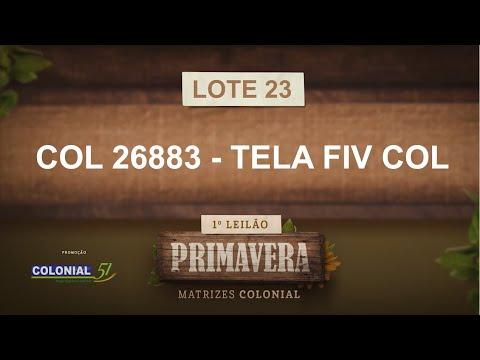 LOTE 23   COL 26883