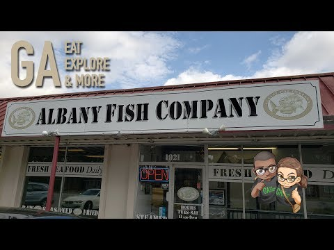 Albany Fish Company - Restaurant Spotlight & Food Review