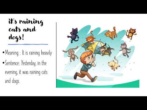 Idiom1 It Is Raining Cats And Dogs For Kids Above 4 Years Youtube