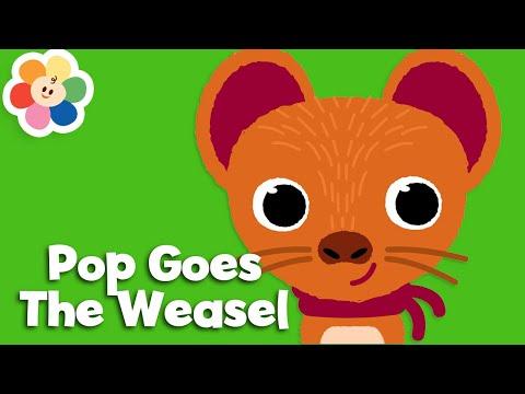 pop-goes-the-weasel-|-nursery-rhymes-for-babies-|-the-best-kids-songs-&-baby-songs-|-babyfirst-tv