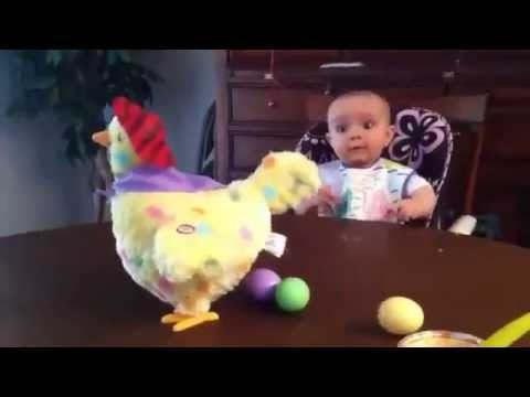 Chicken toy and baby cute