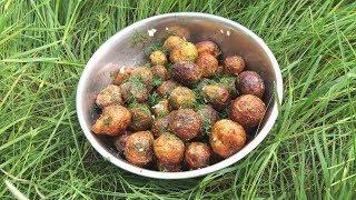 Готовим молодую Картошку. Вкуснейшая жареная молодая Картошка. Готовим на природе.  fried potatoes