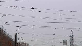В центре Твери сняли трамвайные провода