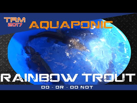 Intro to - Farming Sustianable and Organic Rainbow Trout in Aquaponics