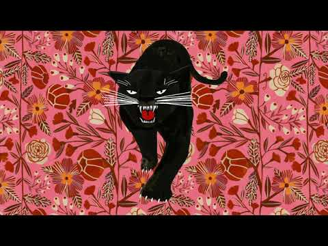 Laura Veirs — The Panther (Official Audio)