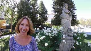 The Buzz, Calabasas Events Week of Nov. 4th (America in Bloom at Civic Center)
