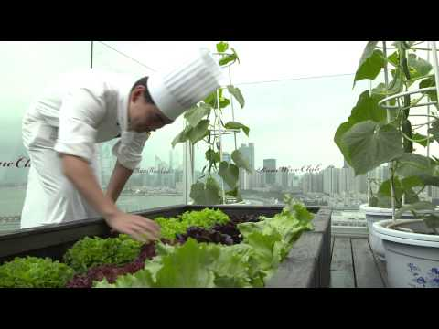 Promoting a healthier lifestyle with vegetables